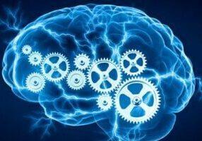 Phosphatidylcholine-improves-memory
